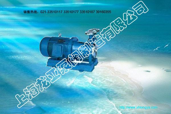CW型磁力旋涡泵